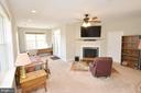 Recreation room with gas burning FP, full bath - 19082 PILEATED TER, LEESBURG