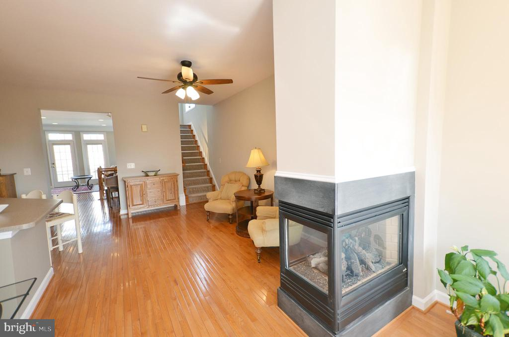 Three sided fireplace - 19082 PILEATED TER, LEESBURG
