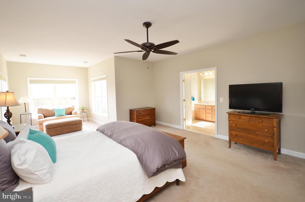 Master bedroom with sitting area - 19082 PILEATED TER, LEESBURG