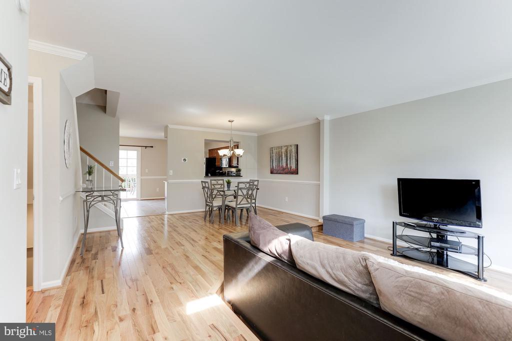 Foyer Area - 14111 BETSY ROSS LN, CENTREVILLE
