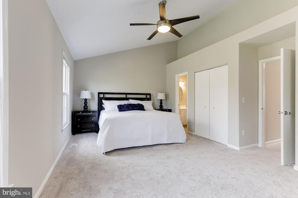 Spacious Master Bedroom - 14111 BETSY ROSS LN, CENTREVILLE