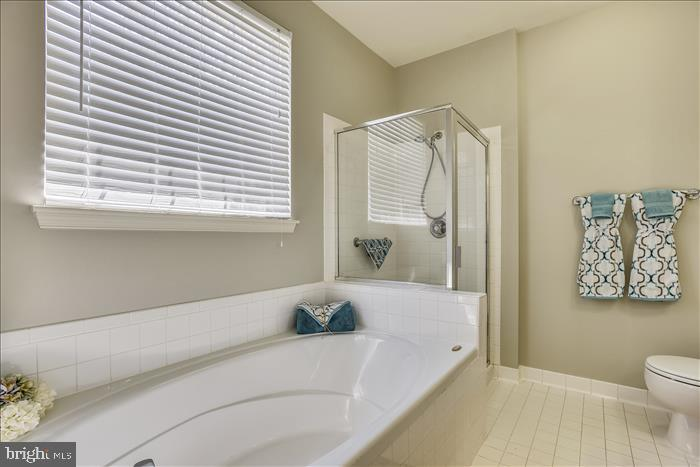 Relaxing Soaking Tub~Separate Shower - 43299 RUSH RUN TER, ASHBURN