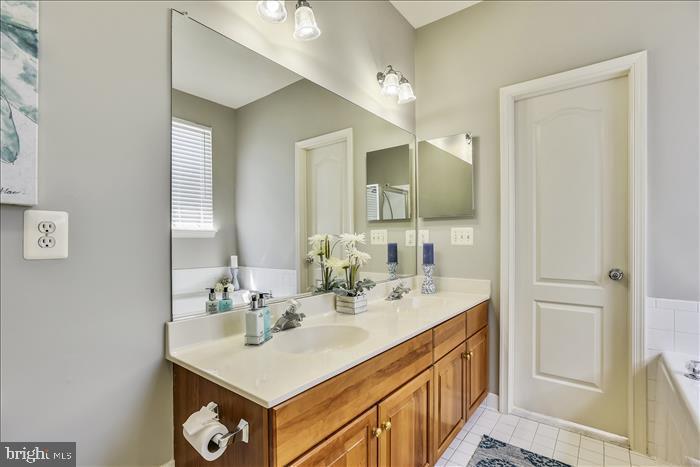 Freshly Painted Owner's Bath - 43299 RUSH RUN TER, ASHBURN