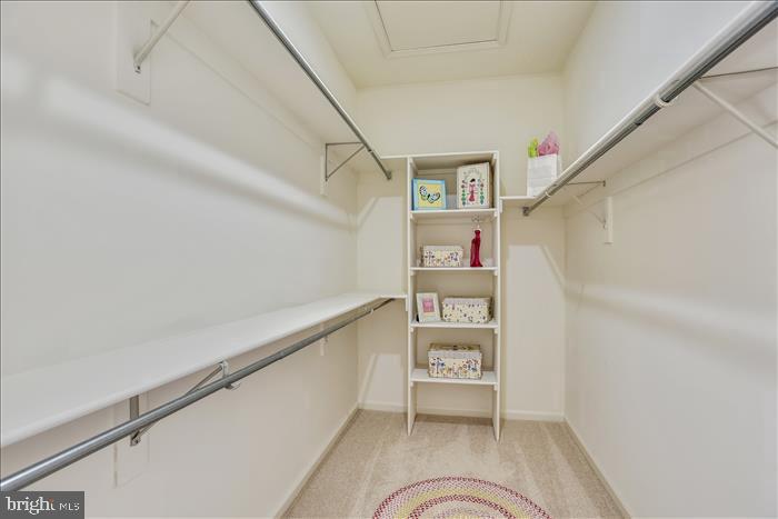Expansive Walk-In Closet in Owner's Suite - 43299 RUSH RUN TER, ASHBURN