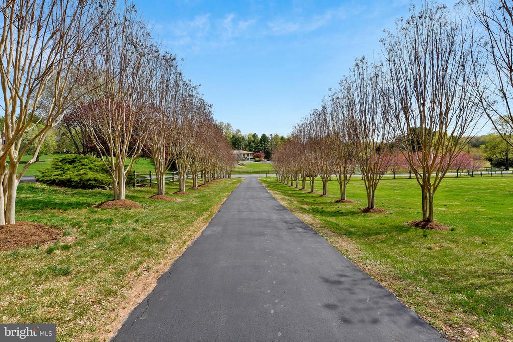 Elegant, tree lined driveway - 7608 MANOR HOUSE DR, FAIRFAX STATION