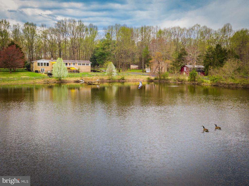 Custom Estate w/pond, pool, barn, two garages! - 13108 LAUREL GLEN RD, CLIFTON