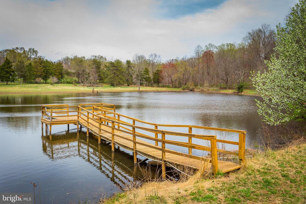 Pond, Dock & View! - 13108 LAUREL GLEN RD, CLIFTON