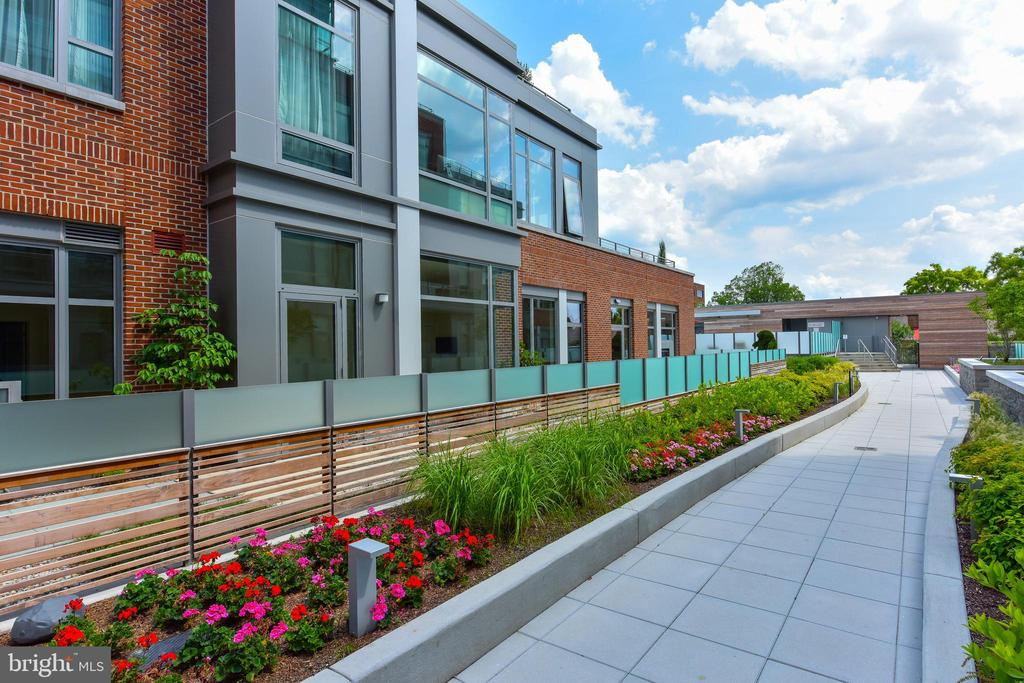A flower lined walk way to the community pool - 601 N FAIRFAX ST #316, ALEXANDRIA