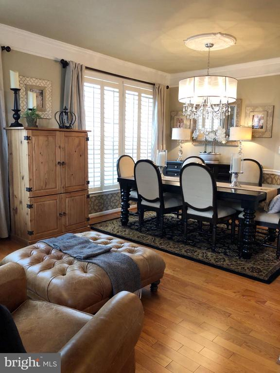 Plantation shutters and notice the ceiling paint! - 21528 INMAN PARK PL, ASHBURN