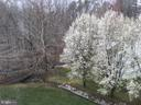 Backyard - 15947 KENSINGTON PL, DUMFRIES