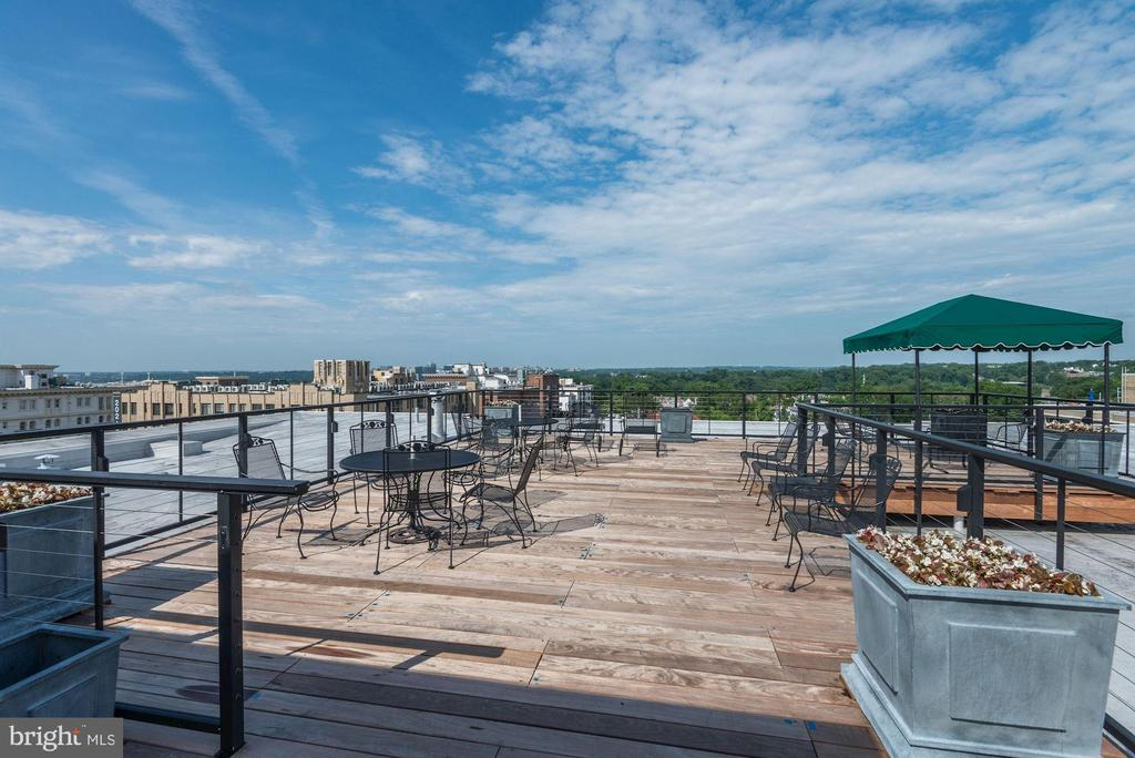 Roof deck, with kitchen, restroom, herb garden - 2029 CONNECTICUT AVE NW #71, WASHINGTON