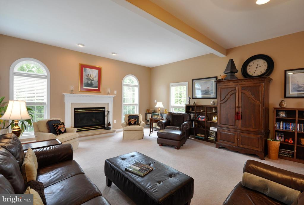 Gas fireplace in the family room - 26 PINKERTON CT, STAFFORD
