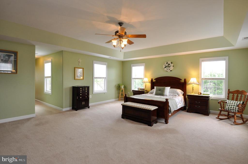 HUGE master bedroom, trey ceiling - 26 PINKERTON CT, STAFFORD