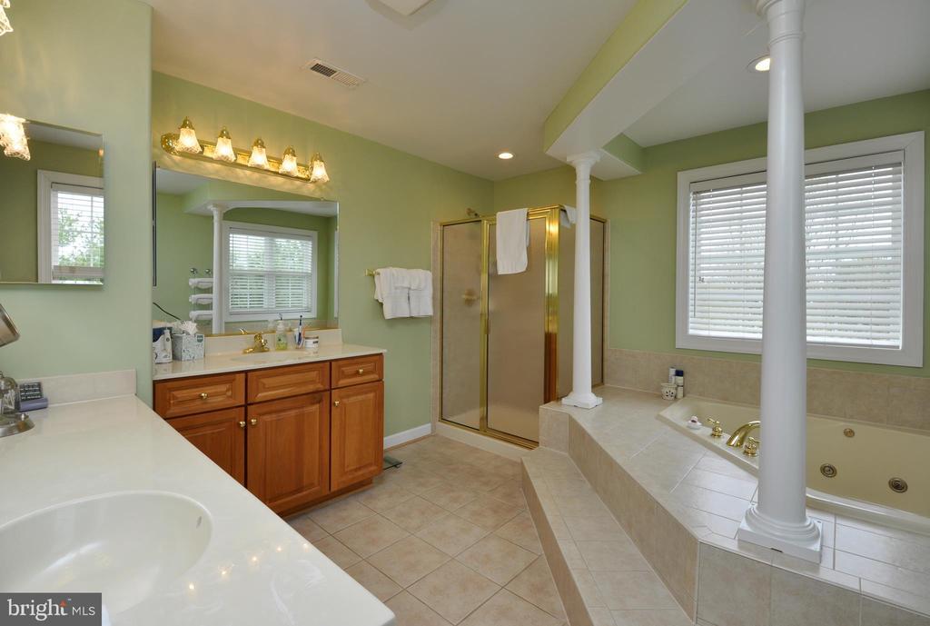 Luxury master bath - 26 PINKERTON CT, STAFFORD