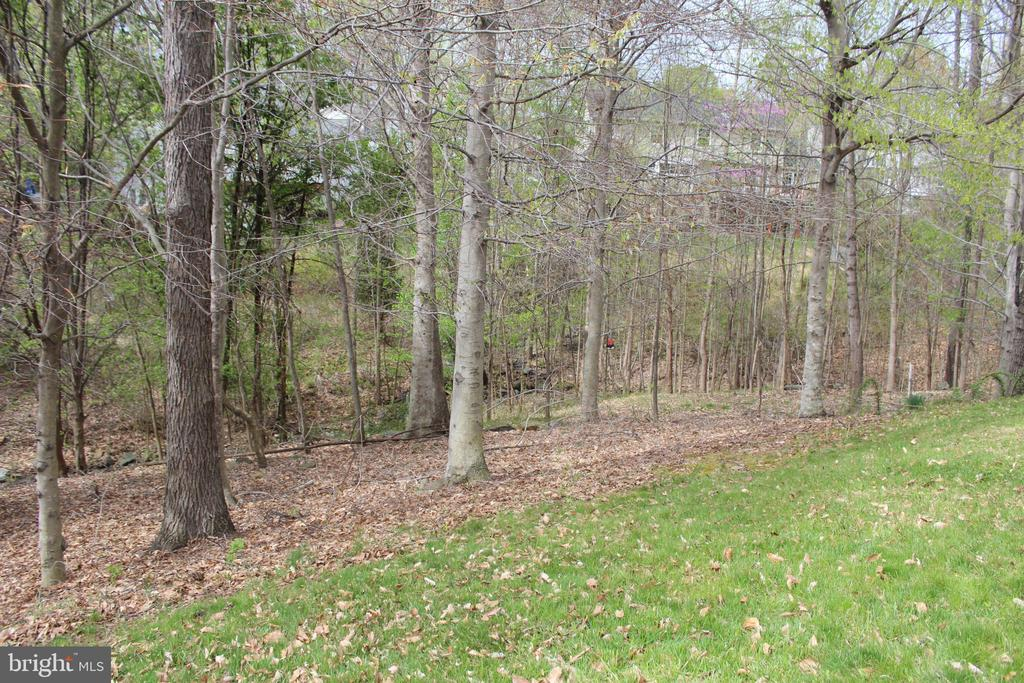 Wooded view - 13 HARRY CT, STAFFORD