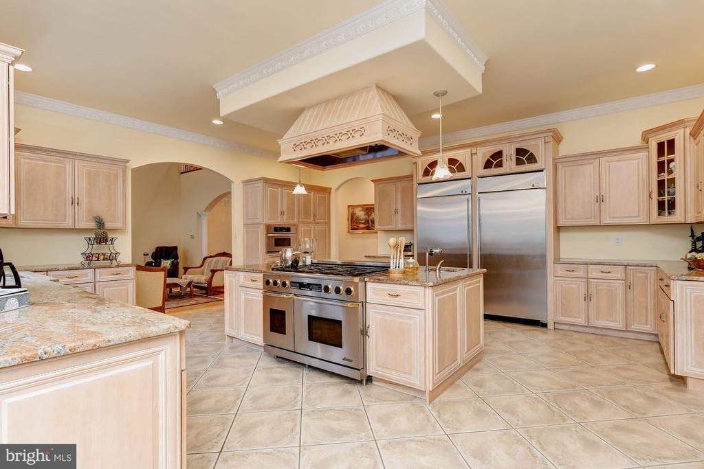 Professional Stainless Appliances - 11536 MANORSTONE LN, COLUMBIA