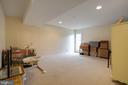 Fully finished, walkout basement - 7127 AZALEA DR, RUTHER GLEN