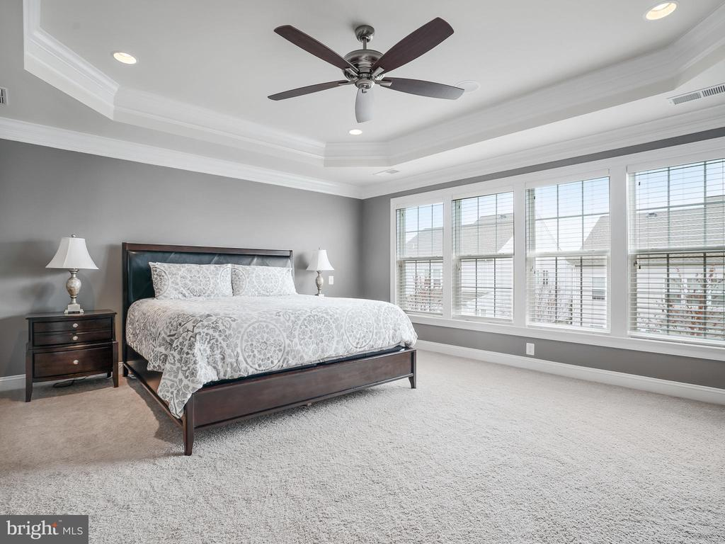 Tray Ceilings - 42612 WILLOW BEND DR, BRAMBLETON