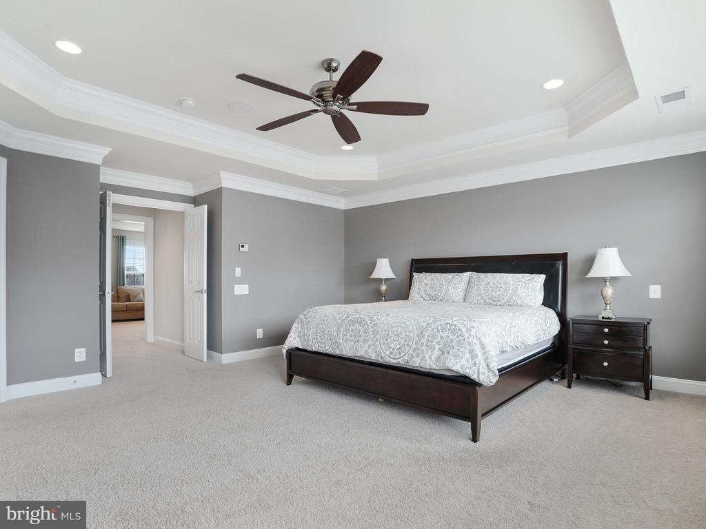 Elegant Master Suite - 42612 WILLOW BEND DR, BRAMBLETON
