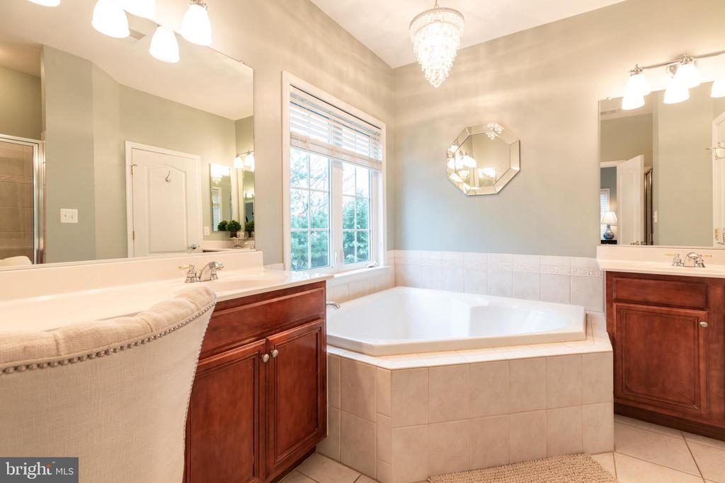 MBath with custom lighting and soaking tub - 21528 INMAN PARK PL, ASHBURN