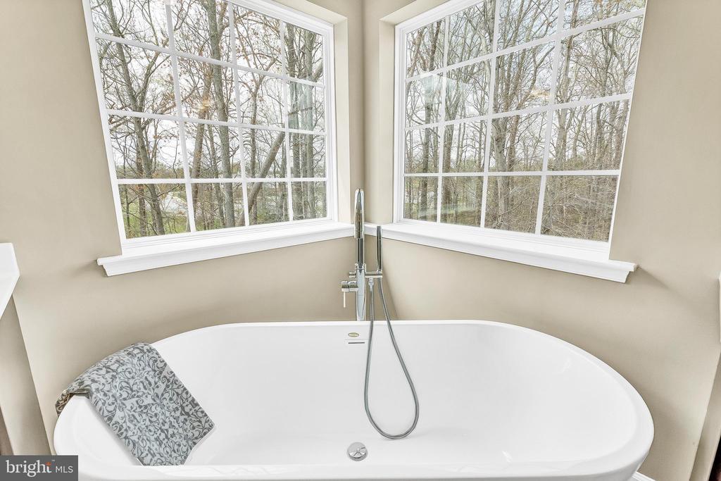 Master bath with Free standing soaking tub. - 10407 DEL RAY CT, UPPER MARLBORO