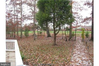 View of park, pool, playground in back of home - 424 YORKTOWN, LOCUST GROVE