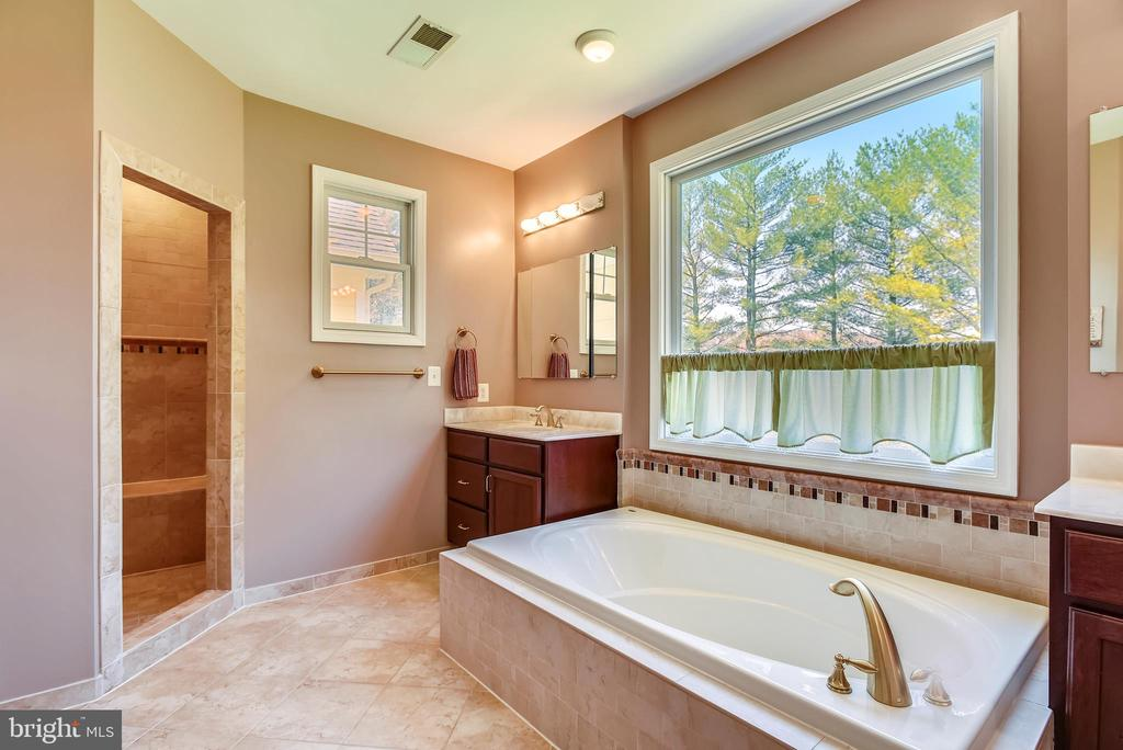 Master Bathroom with Separate Tile Shower - 15579 WOODGROVE RD, PURCELLVILLE