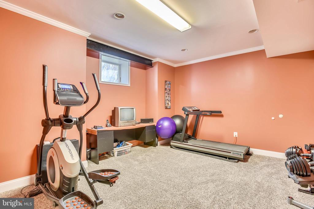 Lower Level Exercise Room with Large Closet - 15579 WOODGROVE RD, PURCELLVILLE
