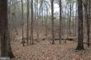 Wooded View - 30 CARDINAL DR, FREDERICKSBURG
