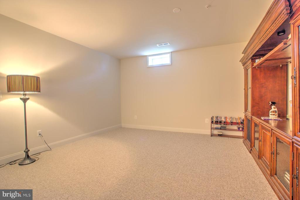 Lower Level In-Law Suite - 4607 EXMOORE CT, UPPER MARLBORO