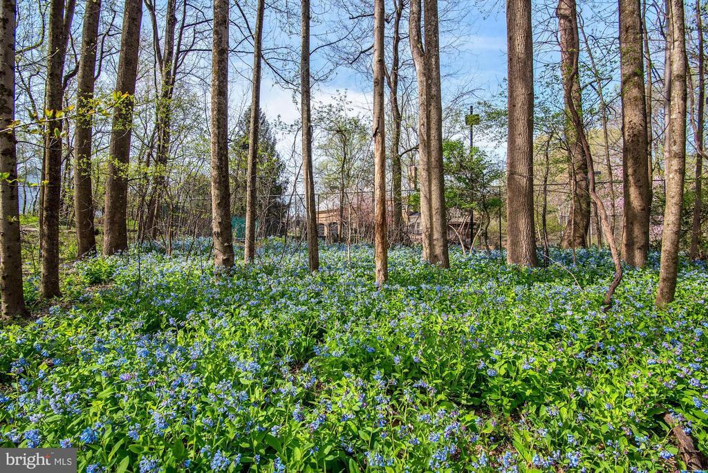 Fields of Flowers - 106 FALCON RIDGE RD, GREAT FALLS
