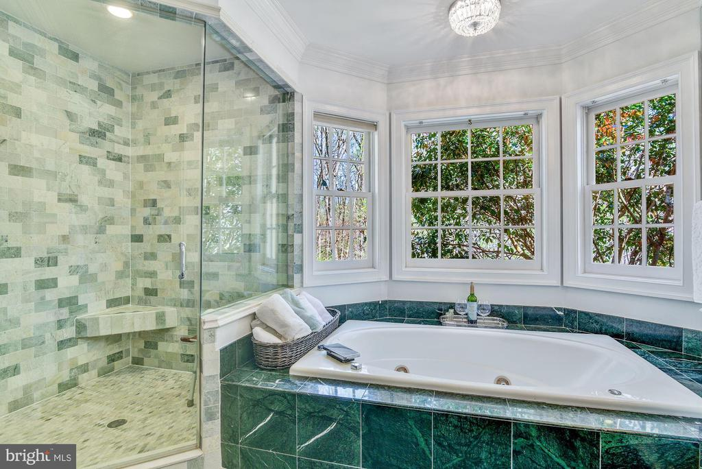 Separate Shower and Jacuzzi - 106 FALCON RIDGE RD, GREAT FALLS