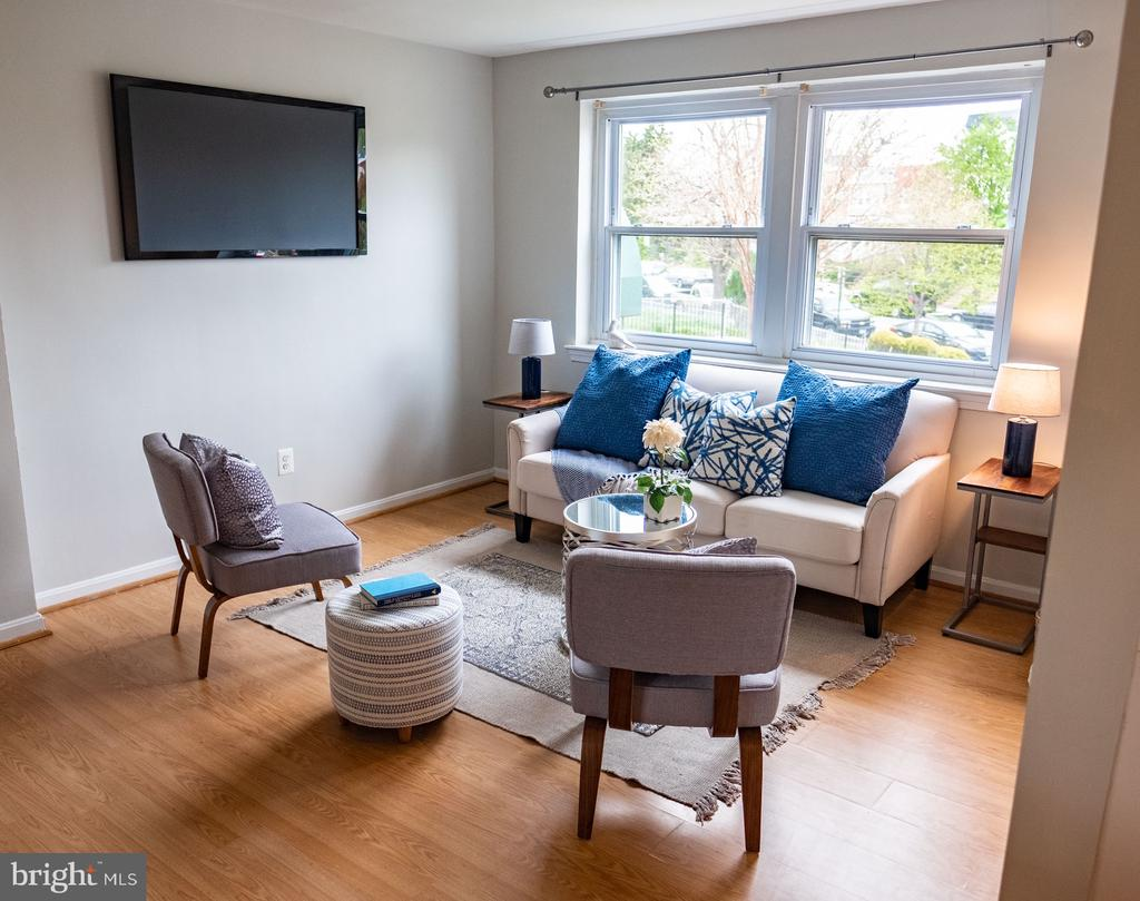 Bright Living Room - 1627 MASSACHUSETTS AVE SE #101, WASHINGTON