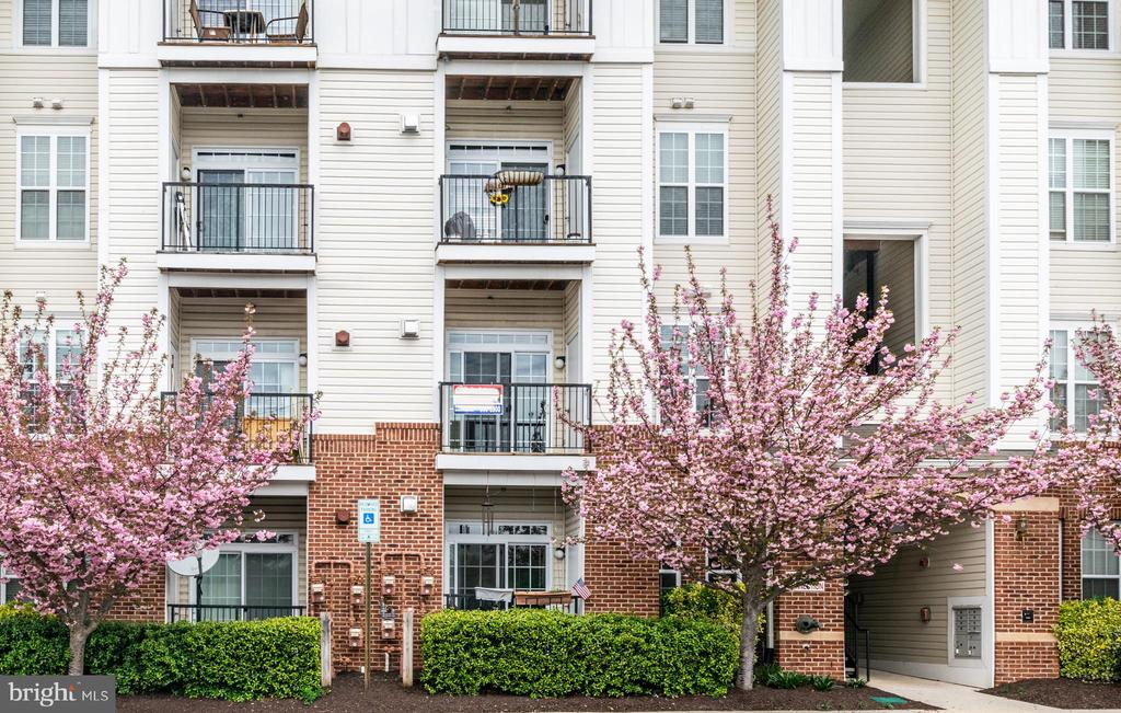 Second level balcony faces south - very bright - 21216 MCFADDEN SQ #205, STERLING
