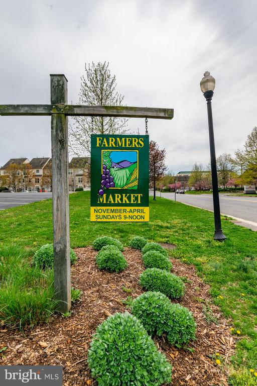 Near Library, farmers market, + Cascades shopping - 21216 MCFADDEN SQ #205, STERLING