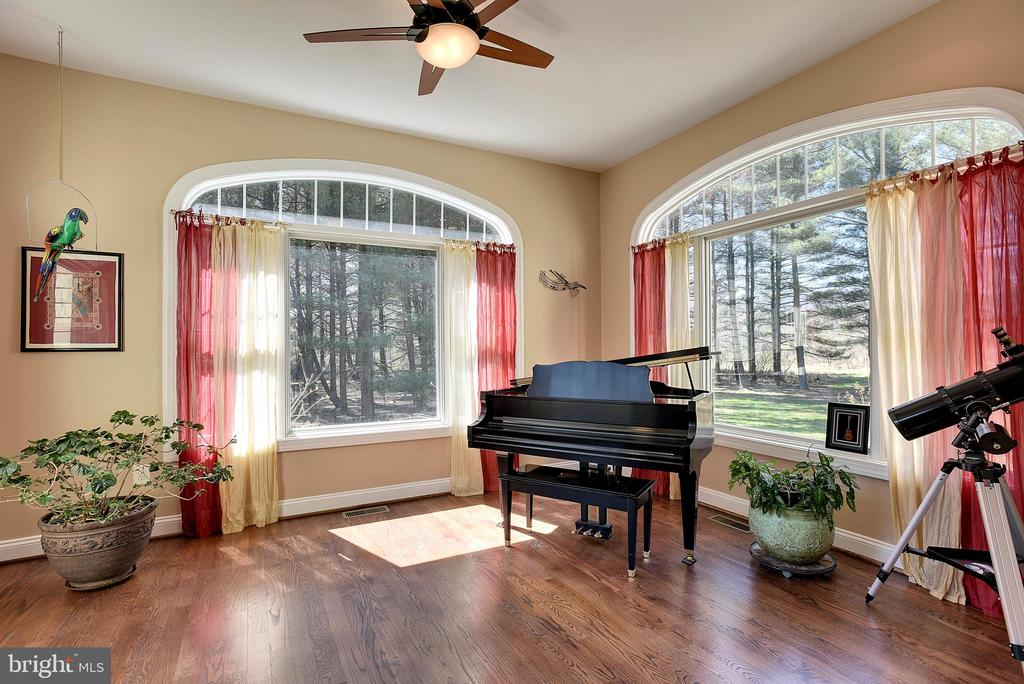 Soothing Sun Room for Reading & Happy Plants! - 15579 WOODGROVE RD, PURCELLVILLE
