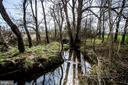 Stream two on the Property- - 14974 MERRITT FARM LN, LEESBURG