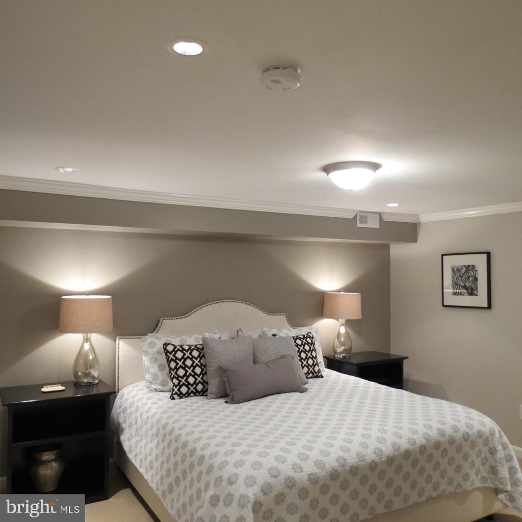 Lower Level Bedroom #5 - Double Closet - 4345 BANBURY DR, GAINESVILLE