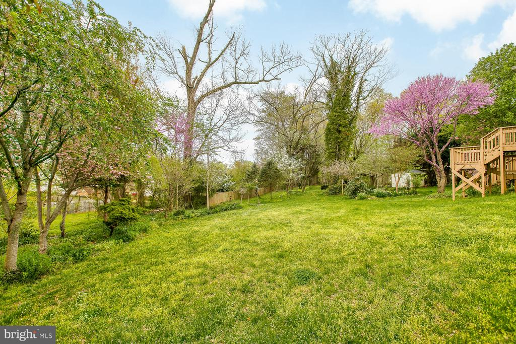 Cherry Blossoms and Landscaping - 15 CAMEO LN, FREDERICKSBURG