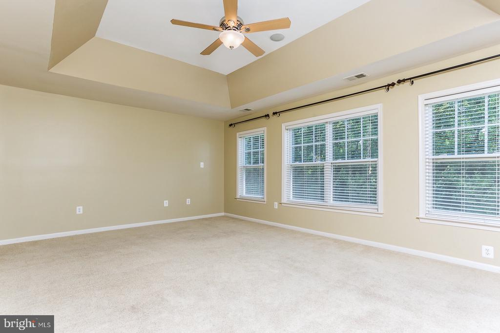 Master  w/tray ceilings and a wall full of windows - 18911 MIATA LN, TRIANGLE
