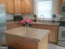 Island in Kitchen - 27046 SHANNON MILL DR, RUTHER GLEN