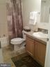 Hall Bathroom - 27046 SHANNON MILL DR, RUTHER GLEN