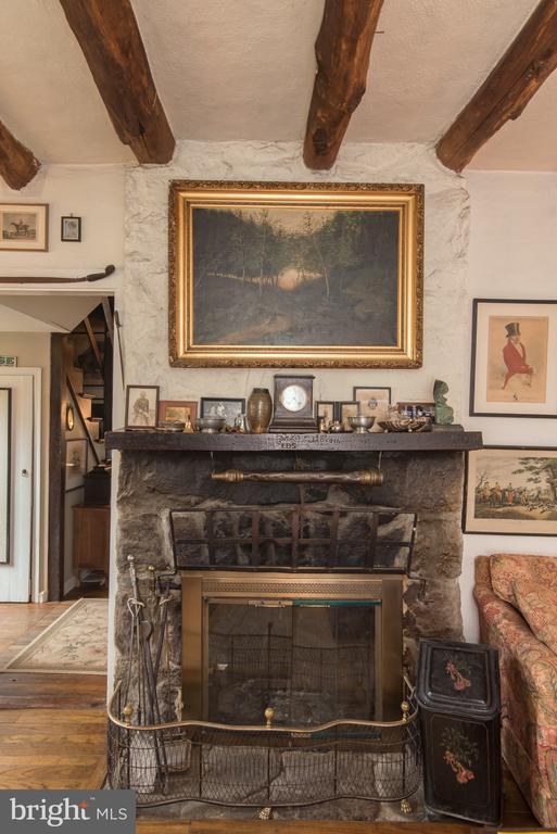 Wood burning fireplace - 36042 JOHN MOSBY HWY, MIDDLEBURG