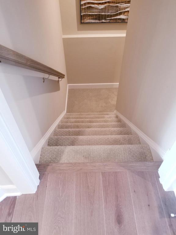 Stairs to Basement - WILD WILLOW WAY- WATERFORD, LEESBURG