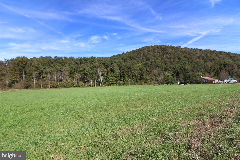 土地,用地 为 销售 在 Rowlesburg, 西弗吉尼亚州 26425 美国