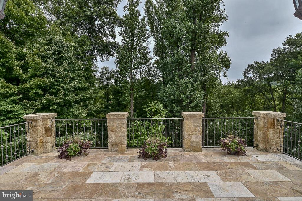 Travertine Terrace in Tree Canopy - 6126 FRANKLIN PARK RD, MCLEAN