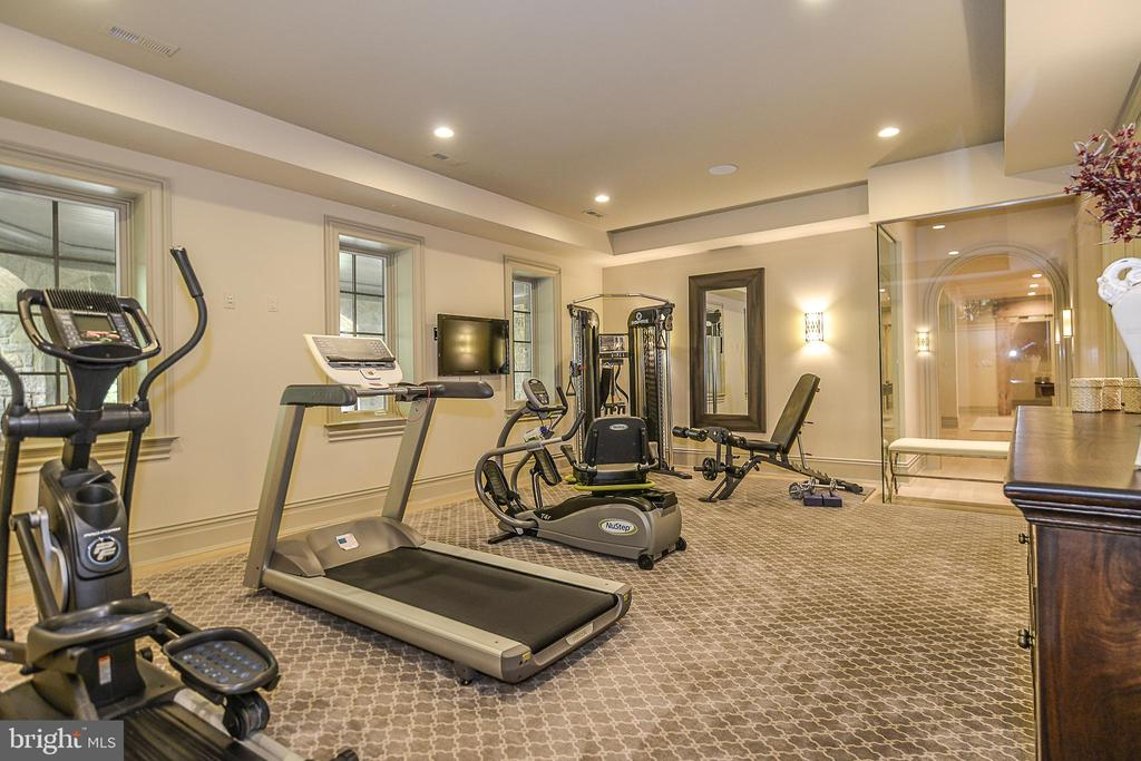 Glass Walled Exercise Room w/ Surround Sound - 6126 FRANKLIN PARK RD, MCLEAN