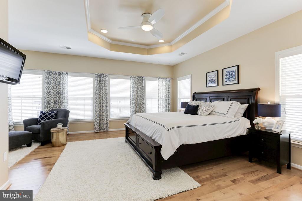 Master Bedroom - 5933 EMBRY SPRING LN, ALEXANDRIA