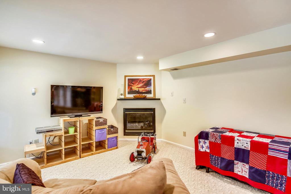 cozy up by the fire downstairs - 48 SAVANNAH CT, STAFFORD