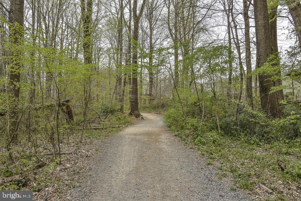Lake Accotink Park trails - 5620 INVERCHAPEL RD, SPRINGFIELD